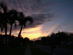 Morning rays!
