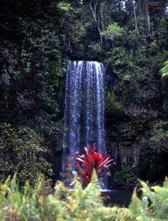 Rinfreschiamoci sotto una cascatella tropicale