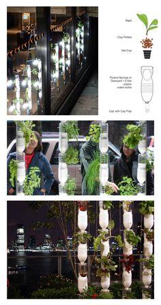 Vertical garden by plastic bottle garden vertical garden diy
