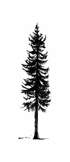 Fir by Kelli MacConnell Forest Forearm Tattoo, Forearm Tattoos, Sleeve Tattoos, Tree Silhouette Tattoo, Pine Tree Silhouette, Forest Silhouette, Mountain Outline, Mountain Drawing, Tree Outline