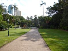 Brisbane Botanical Gardens.