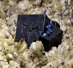 Fluorite avec Chalcopyrite. Saxe, Allemagne FOV=16 mm Photo Mark Wrigley