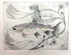 the whiteadder trout-drypoint etching, screen print and ink Drypoint Etching, Fish Tales, Etching Prints, Graphite Drawings, Drawing Base, Magical Creatures, New Words, Limited Edition Prints, Trout