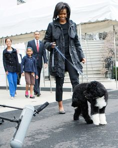 Bo Obama Walks with Family