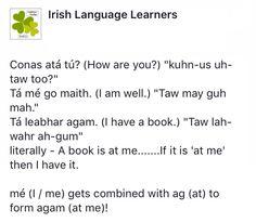 Tá mé go maith Irish Gaelic Language, Gaelic Irish, Scottish Gaelic, Irish Pride, Celtic Words, Scottish Words, Irish Toasts, Language Lessons, Idioms