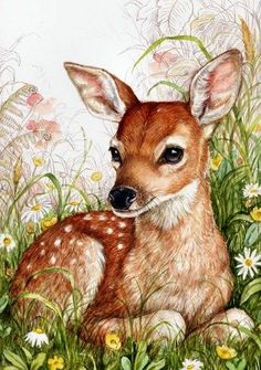 Jewerly Illustration Design Beautiful New Ideas Animal Paintings, Animal Drawings, Art Drawings, Drawing Sketches, Drawing Ideas, Sketching, Deer Art, Beautiful Drawings, Awesome Drawings