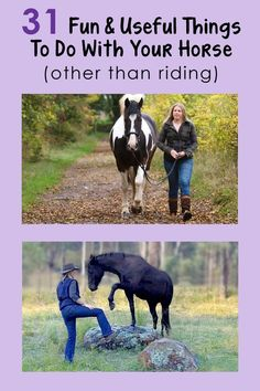 There is so much more to horses than just riding. Love this!