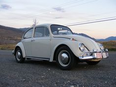"""The Beetle most Americans are familiar with is called the Deluxe. In Europe and Canada, Volkswagen offered a standard version of the Beetle which had minimal chrome, fewer luxuries, a less powerful engine and cost about 10% less. Although these are often referred to as """"standard"""" models, Volkswagen preferred to call the trim line the """"Custom""""."""