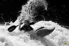 Roar like a tiger sting like a bee  Shot by Adrian John  at the Malabar River Festival  #mrf2017 #malabarriverfestival #kerala #kayakmedia #kayak #kayaklife #whitewaterkayaking #river #splash #outdoor #outdoorlife #watersports #riversofindia #watersports #kayaking #india #adventuresports #blacknwhite #bwphoto #silhouette #sihouttephotography