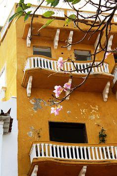 Ellas. Cartagena Colombia