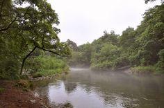 Kedrovaya river (Khasan district, Primorsky kray, Russia)