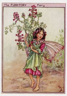 FLOWER FAIRIES/BOTANICALS: The Fumitory Fairy; This is an original vintage Cicely Mary Barker Flower fairies colour print. It is not a modern reproduction, approximate size x x 3 inches Cicely Mary Barker, Fantasy Kunst, Fantasy Art, Flower Fairies Books, Elves And Fairies, Fairy Pictures, Vintage Fairies, Vintage Wall Art, Vintage Paper