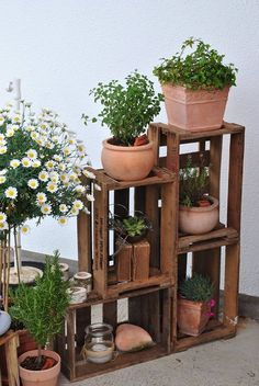 von Kundin Marion Foto von Kundin Marion Foto von Kundin Marion The post Foto von Kundin Marion appeared first on Balkon ideen.Foto von Kundin Marion Foto von Kundin Marion The post Foto von Kundin Marion appeared first on Balkon ideen. Wooden Crates, Wooden Boxes, Wooden Decor, Garden Inspiration, Indoor Plants, Potted Plants, Patio Plants, Container Gardening, House Plants