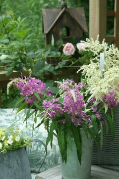 Galvanized Containers & Baskets as Container Gardens