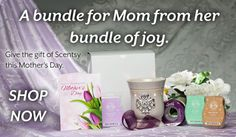 #Scentsy Mother's Day Gift Bundle!!! A perfect gift:) Place your order at www.ginastewart.scentsy.us.