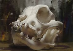 skull, Zhelong XU : ...