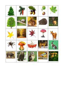 Bingo, Montessori, Cards, Maps, Playing Cards