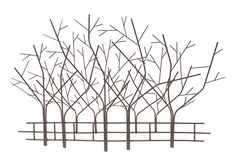 Marshall Home and Garden Serenity Trees ** Continue to the product at the image link.