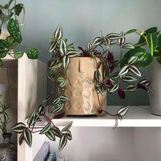 Husvandrer Planter Pots