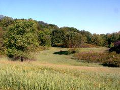 County Farm Park