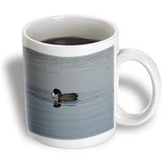 3dRose - Beverly Turner Photography - American Coot - 15 oz mug
