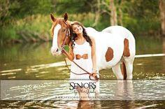 horse senior pictures