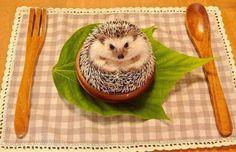 (1) hedgehog | Tumblr