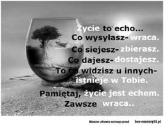 Życie to echo. Motto, Irish Singers, Self Improvement, Food For Thought, Good To Know, Life Quotes, Thoughts, Writing, Humor