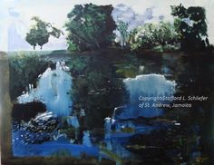 Gallery | Experience Jamaique Experience, Contemporary Artists, Jamaica, Fine Art, Gallery, Painting, Negril Jamaica, Roof Rack, Painting Art