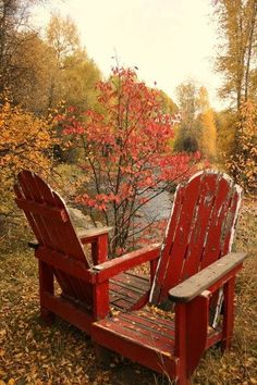 sitting in sweaters, down throws and steaming cups of hot cocoa, looking at the trees and leaves, that wonderful smell of autumn in the air, nothing like it. Pure Perfection