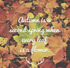 A #cmawesomeautumn design contest entry from @Inspirationf on Twitter.