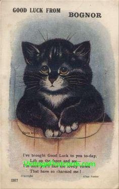 """Wain Cat Bognor Views Poem Novelty Fold-Out """"Good Luck from Bognor."""" Lift the flap to see the town views fold-out. Louis Wain cat. Valentine's Series."""