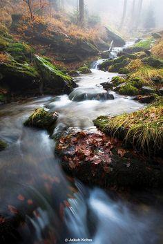 One of many Jesenik Creeks in the Jesenik Mountains, Czech Republic
