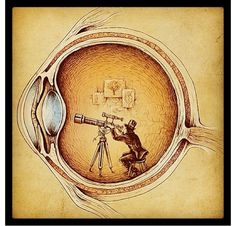 Ophthalmology. I love this!!