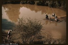 Depression Pictures in Color | Catch of the day: One of these fishermen is reeling in a fish in this ...