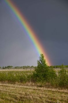 Rainbow over Southern Plains, Manitoba, Canada -by fanny Rainbow Connection, Somewhere Over, Pot Of Gold, Historical Images, Quebec City, Gods Creation, Gods Promises, Natural Phenomena, Nature Images