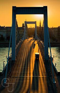 Elisabeth Bridge in dawn. (Erzsébet-híd). Budapest. Photo: János Gehring