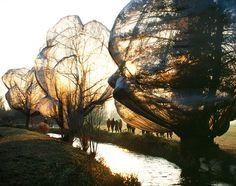 """Land Art-Christo """"emballage d'arbres en Suisse"""""""