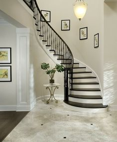 Nice Majestic design for this pinnacle favorite for a curved staircase. Foyer Staircase, Entry Stairs, Curved Staircase, House Stairs, Staircase Design, Staircases, Hallway Ideas Entrance Narrow, House Design Pictures, Flooring For Stairs