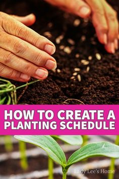 Learn how to create a planting schedule for your vegetable garden. A planting schedule might take a bit of time to put together the first time but I promise you that if you do it and make sure to update it during the season it will save you a ton of time and money in the following years. Planting Fruit Trees, Growing Fruit Trees, Potted Trees, Growing Herbs In Pots, Herbs Indoors, Herb Garden, Compost, Schedule, Berries
