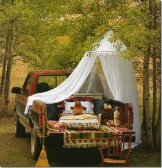sheer canopy over a truck bed picnic set up