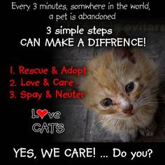 Every 3 minutes, somewhere in the world, a pet is abandoned. You can make a diffrence! Say NO to abandonment. Donate, volunteer, TNR, rescue, foster, adopt.