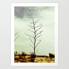 Dunes+II+Art+Print+by+KAFI+D'AMBROSI+-+$25.00