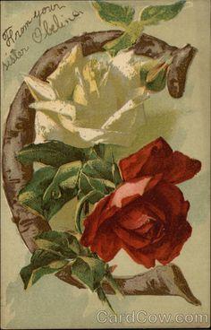 Roses - Letra C