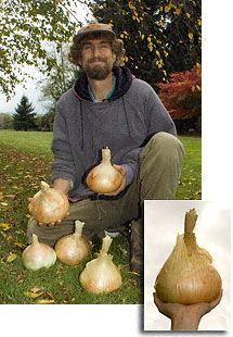 MycoGrow™: Mycorrhizal Fungi for Healthy Gardens   tl_files/V1/images/mycogrow/landing/onions.jpg