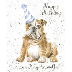 Fur, Feathers and Whiskers, a fun and quirky occasions range of cards from Wrendale Designs