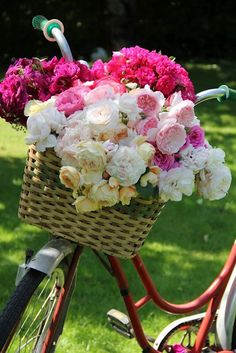 Bike basket bouquet I plan on riding to the ceremony on my old fashioned bike :) My Flower, Fresh Flowers, Beautiful Flowers, Romantic Flowers, Simply Beautiful, Absolutely Gorgeous, Deco Floral, Colorful Roses, Spring Blooms