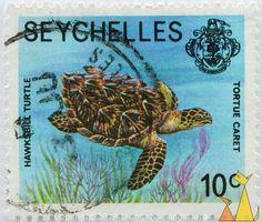 Sello fresco de seychelles
