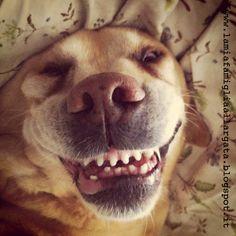 ...e sorridere dei guai...
