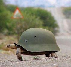 askere gidiyor :)
